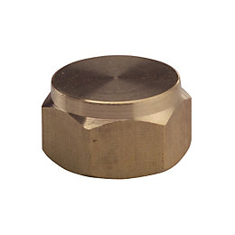 Plumbsure Threaded Blanking Cap (Dia)9.5mm