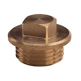 Plumbsure Brass Flanged Male Plug (Dia)12.7mm