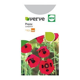 Verve Poppy Seeds, Ladybird Mix