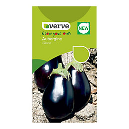 Verve Aubergine Seeds, F1 Galine Mix