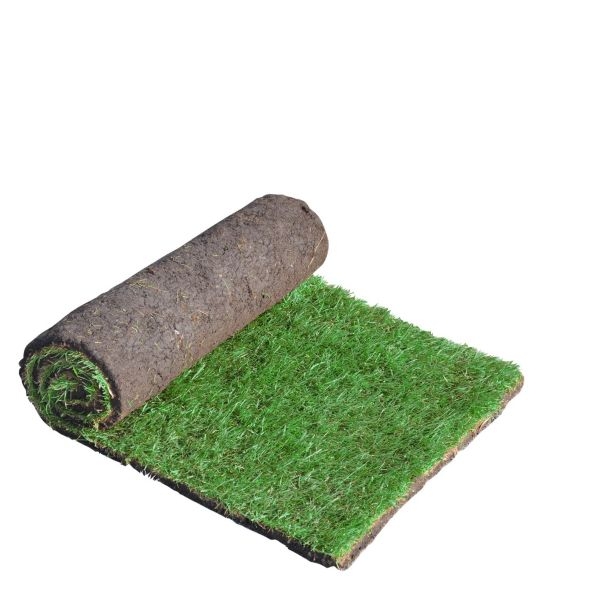 Lawn, Turf & Artificial Grass