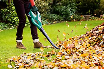 caring for your lawn in early spring