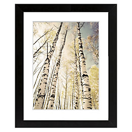 Autumn Trees Black Framed Art (W)540mm (H)440mm