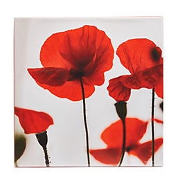 Poppies Red Canvas (W)550mm (H)550mm