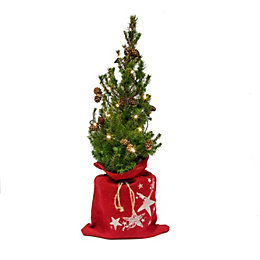 Decorated Small Real Christmas Tree with Lights