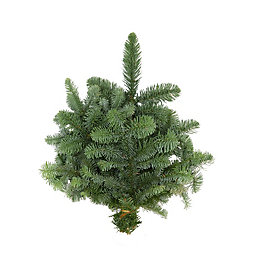 Noble Green Fir Bundle, (D)50.8cm