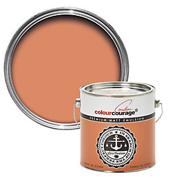 colourcourage Terra De Siena Matt Emulsion Paint 2.5L