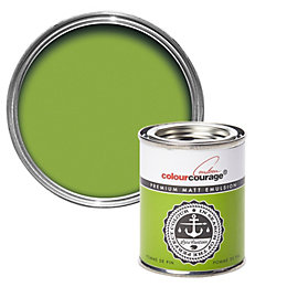 colourcourage Pomme De Pin Matt Emulsion Paint 125ml