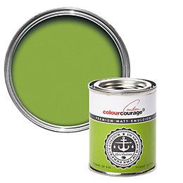colourcourage Pomme De Pin Matt Emulsion Paint 125ml