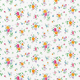 D-C-Fix Floral Pint Multicolour Self Adhesive Film (L)2m