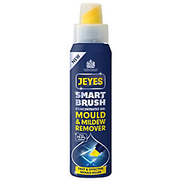 Jeyes Fluid Smartbrush Mould & Mildew Remover, 300