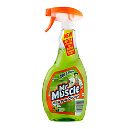 Mr Muscle Cleaning Spray Bottle, 500 ml