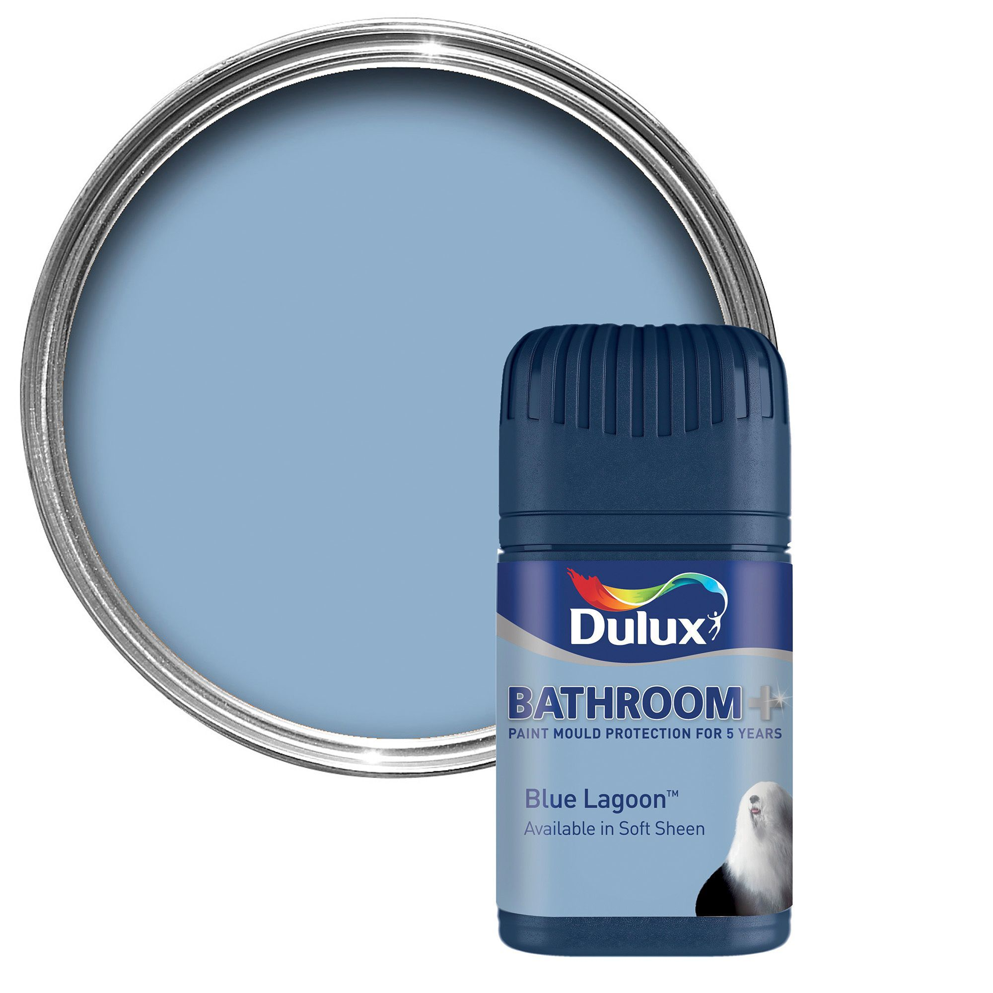 Dulux Blue Lagoon Bathroom Paint
