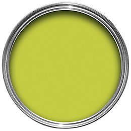 Dulux Feature Wall Luscious Lime Matt Emulsion Paint
