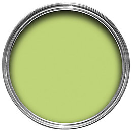 Dulux Endurance Kiwi Crush Matt Emulsion Paint 50ml