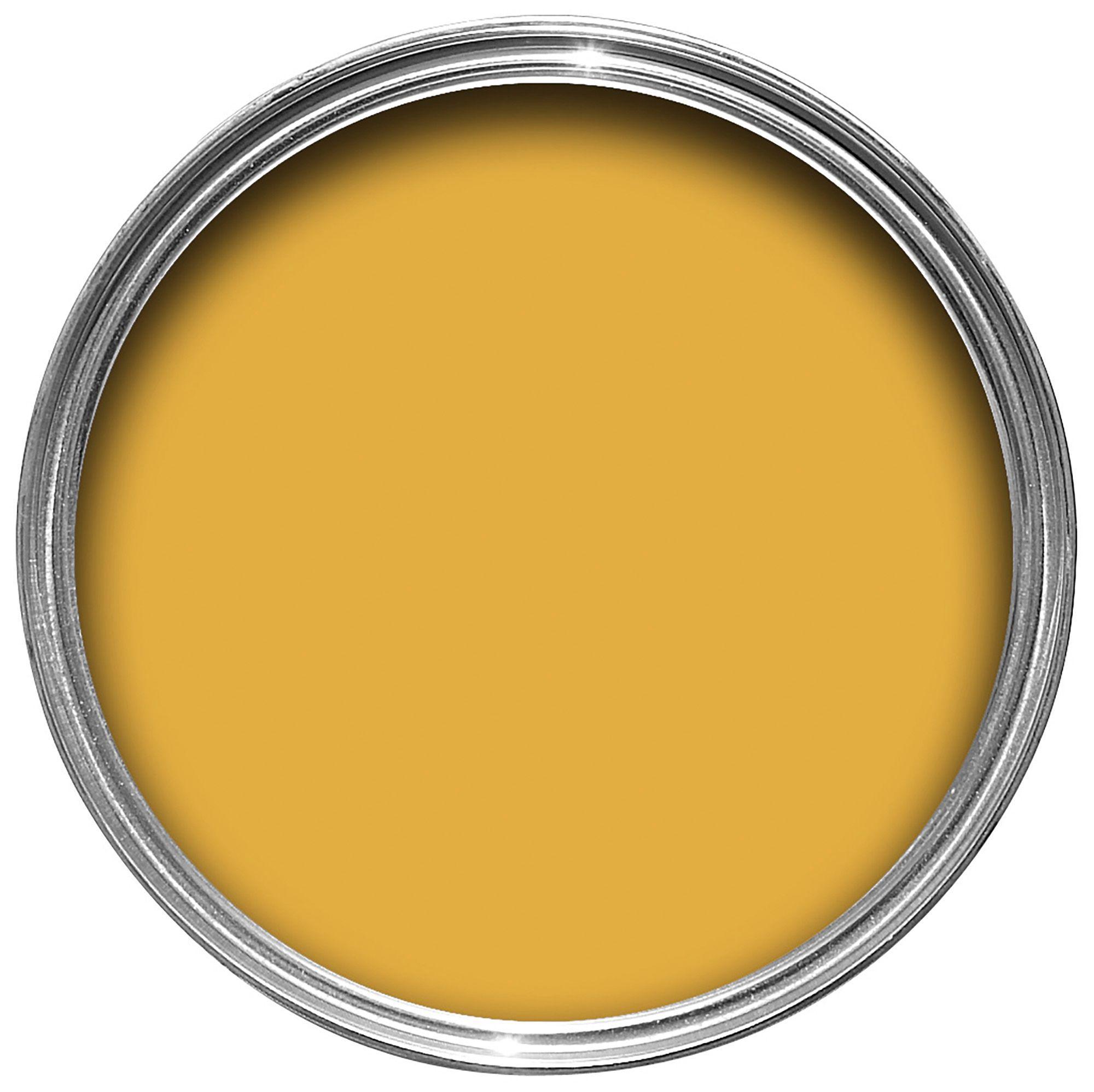 Dulux Kitchen Honey Mustard Matt Emulsion Paint 50ml