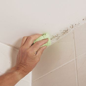 Damp stains or mould on painted walls and ceilings. How to identify  repair   protect against damp at home   Help