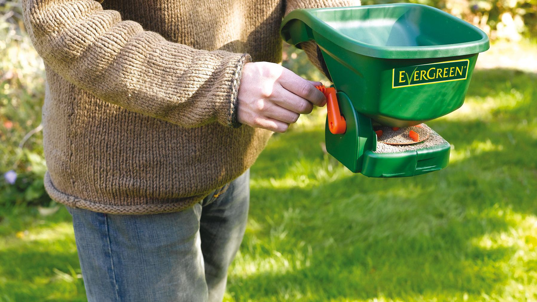 spreading grass seed