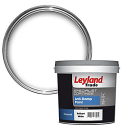 Leyland Trade White Mid Sheen Anti Damp Paint