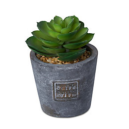 Plastic Succulent In A Pot