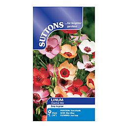 Suttons Linum Seeds, Charmer Mix