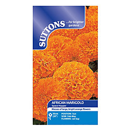 Suttons Marigold African Seeds, Space Hopper Mix