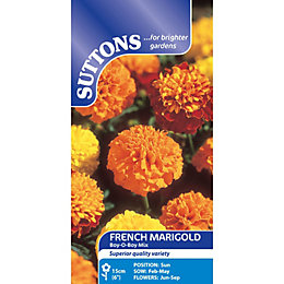Suttons Marigold French Seeds, Boy Mix