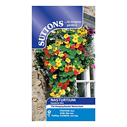 Suttons Nasturtium Seeds, Dayglow Mix