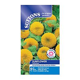Suttons Sunflower Seeds, Teddy Bear Mix