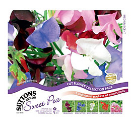 Suttons Sweet Pea Seeds, Exhibitors Collection Mix