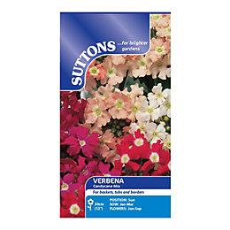 Suttons Verbena Seeds, Candycane Mix