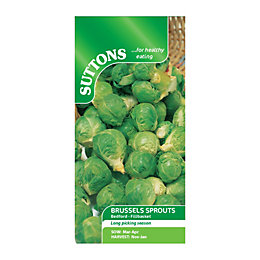 Suttons Brussels Sprout Seeds, Bedford Mix