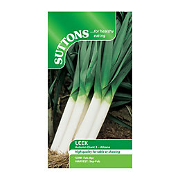 Suttons Leek Seeds, Autumn Giant 3 Albana Mix