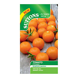 Suttons Tomato Seeds, F1 Sungold