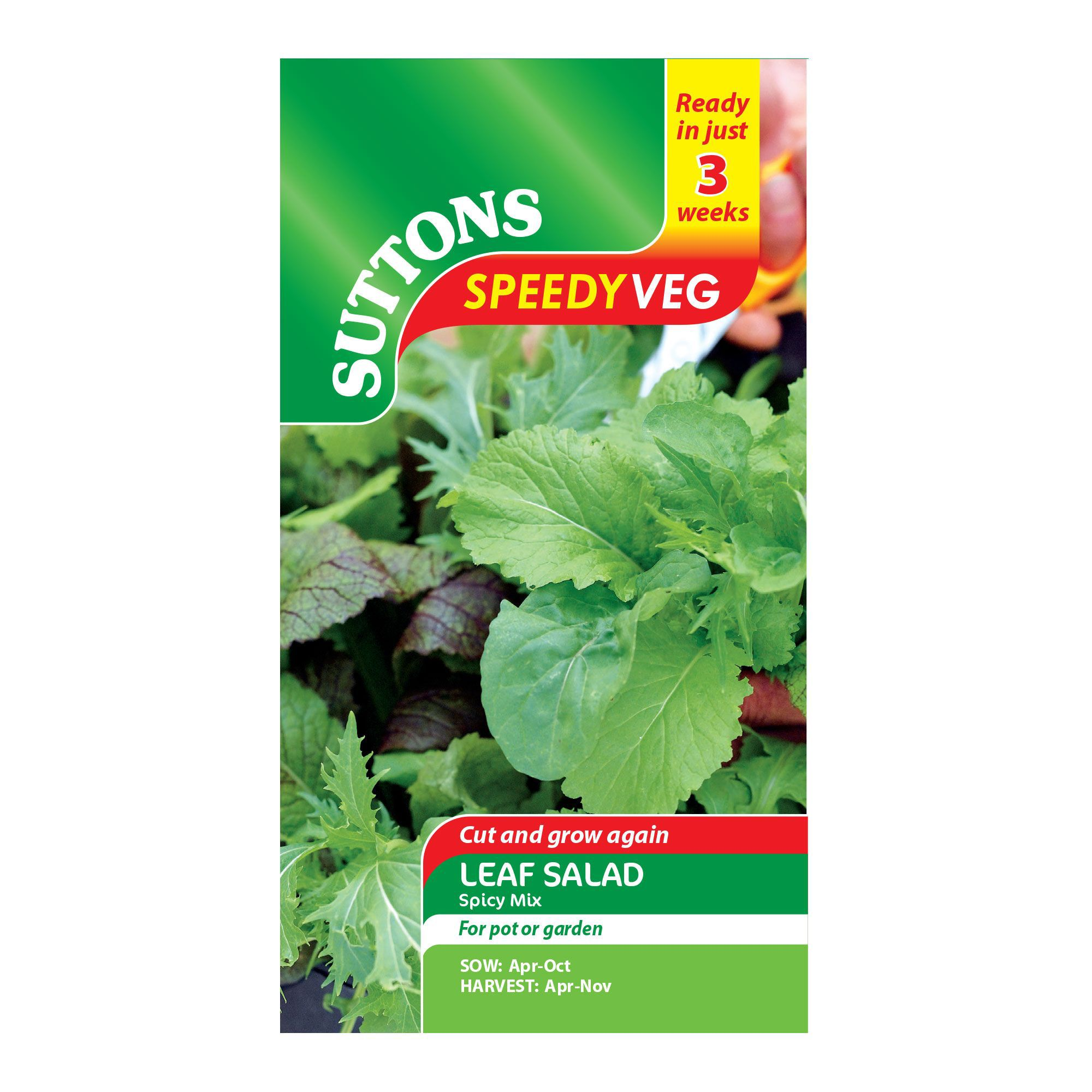 Suttons Speedy Veg Leaf Salad Seeds, Spicy Mix