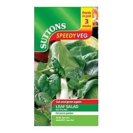 Suttons Speedy Veg Leaf Salad Seeds, Stir Fry