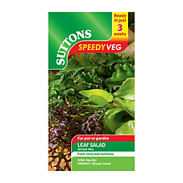 Suttons Speedy Veg Leaf Salad Seeds, Winter Mix