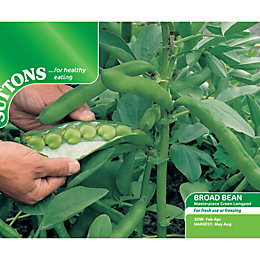 Suttons Broad Bean Seeds, Masterpiece Green Longpod Mix