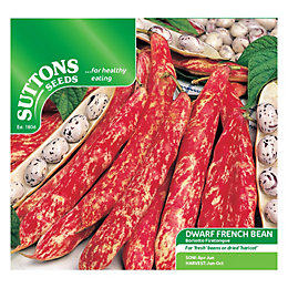 Suttons Dwarf Bean Seeds, Borlotto Firetongue Mix