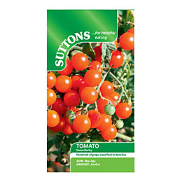 Suttons Tomato Seeds, Sweetbaby Mix