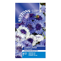 Suttons Cornflower Seeds, Classic Fantastic Mix