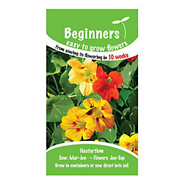 Suttons Beginners Nasturtium Seeds, Jewel Mix