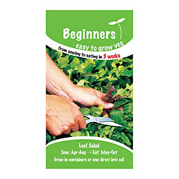 Suttons Beginners Leaf Salad Seeds