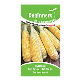 Suttons Beginners Sweetcorn Seeds, F1 Swift Mix