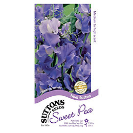 Suttons Sweet Pea Seeds, El Sutton Mix