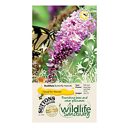 Suttons Wildlife Sanctuary Buddleia Seeds, Butterfly Hybrids Mix