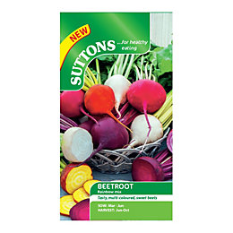 Suttons Beetroot Seeds, Rainbow Mix