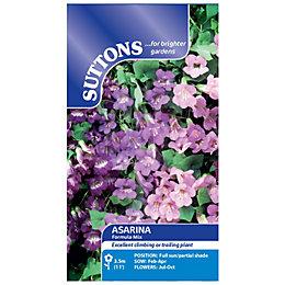 Suttons Asarina Seeds, Formula Mix