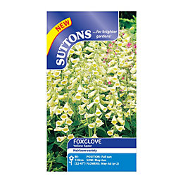 Suttons Digitalis Seeds, Yellow Spear Mix