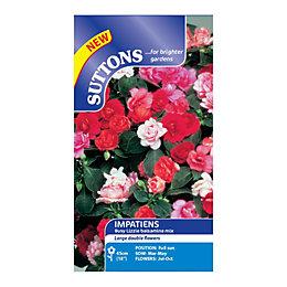 Suttons Impatiens Seeds, Balsamina Mix